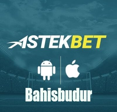 Bahisbudur